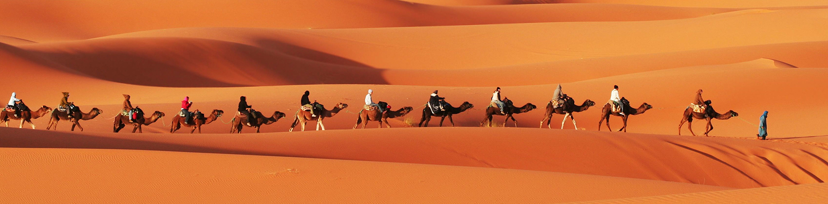 Travel Activities: Morocco
