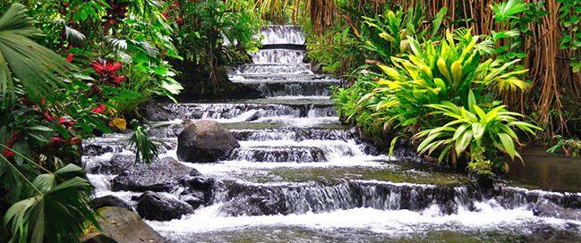 Discover Wildlife - Tabakon Resort