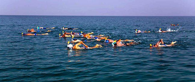 استمتع بالسباحة في البحر الميت