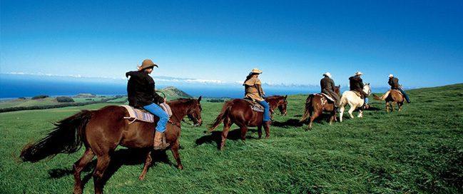 Hawaii - A horse tour to the historic coast