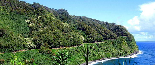 Hawaii - Driving on Hannah's road