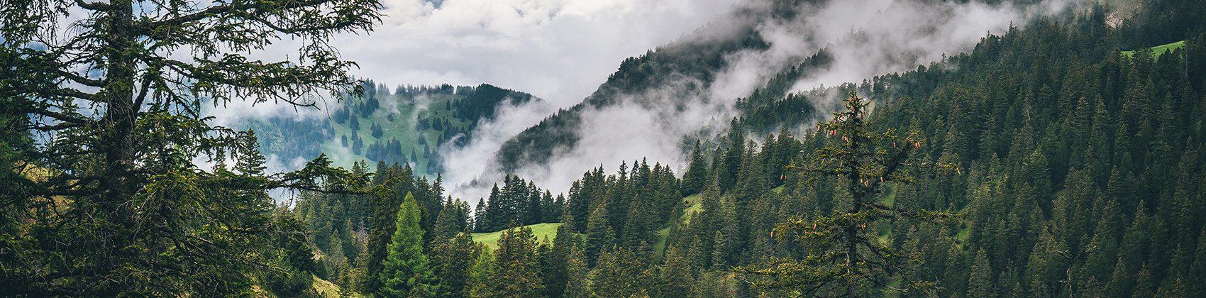 السياحة في جبال الألب: ماذا تفعل في دولة ليختنشتاين