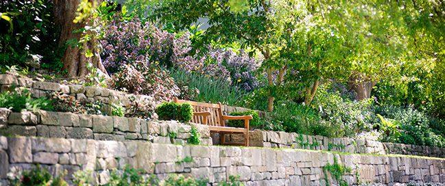 السياحة في سيدني - الحديقة النباتية الملكية