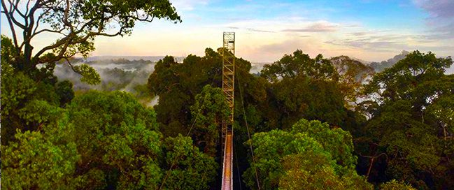 Tourism in Brunei - National Park Oulu Timburong Nature