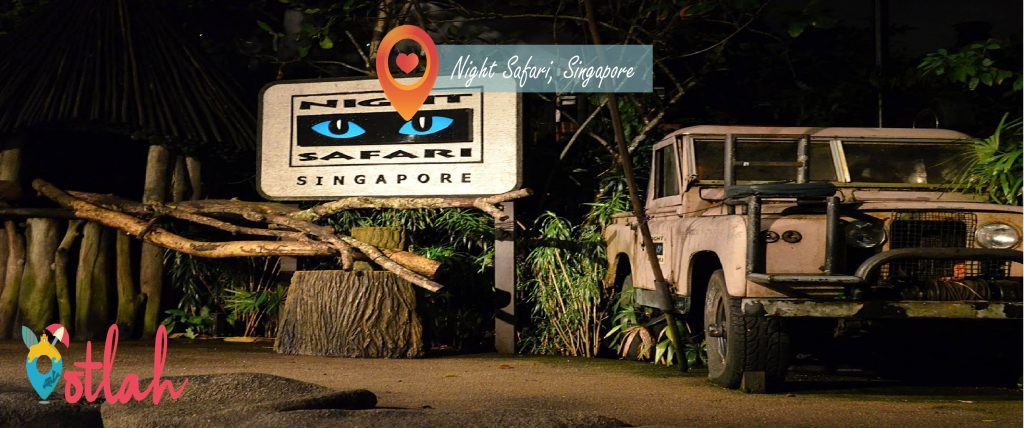 Night Safari