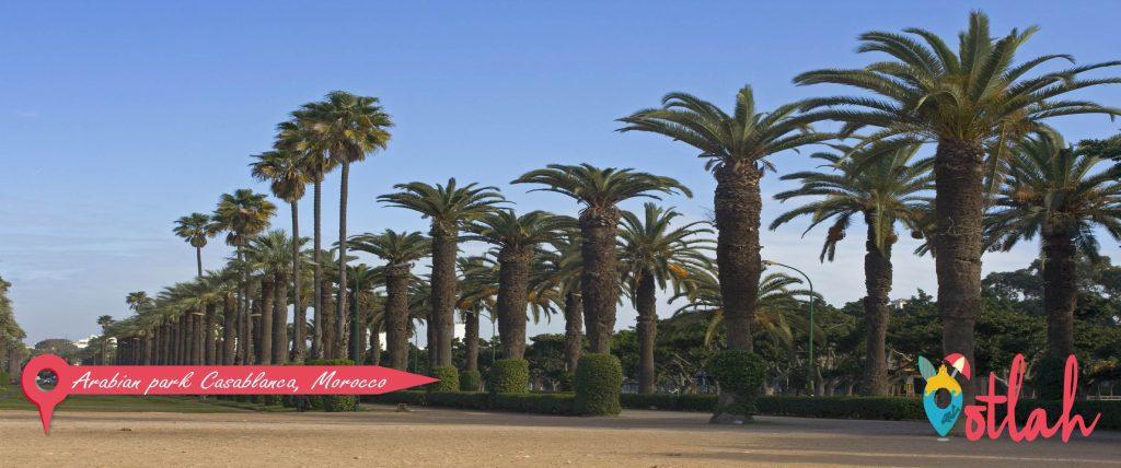 Arabian park Casablanca