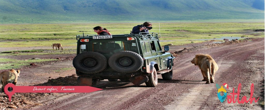 Types of  Safari Jeep Tours