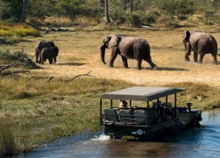 Safari Jeep Tours Between the Wildlife and Spectacular Deserts