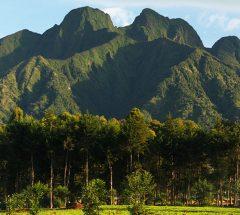 Volcanoes park