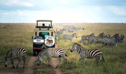 8 Days Safari in Tanzania
