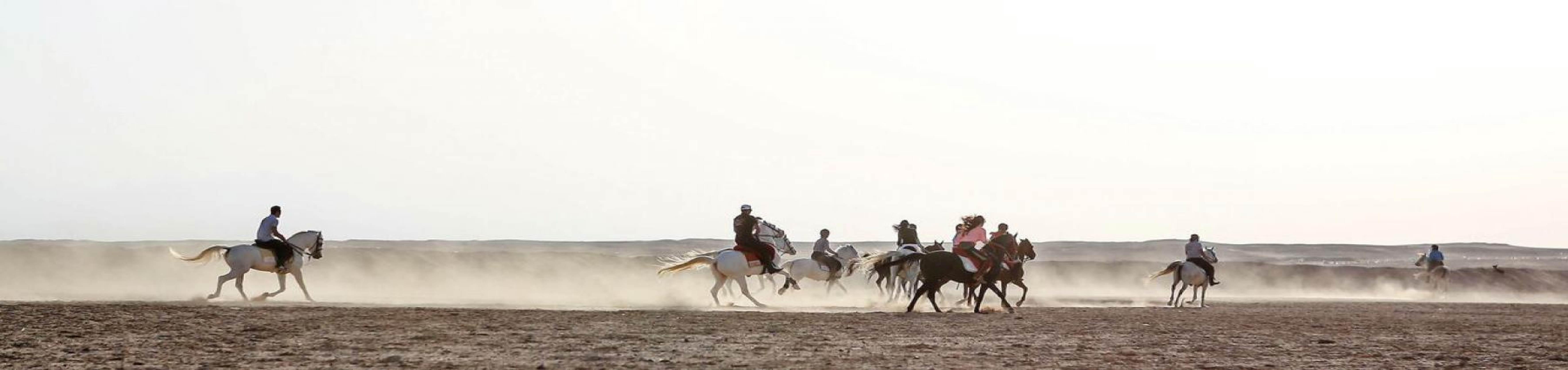 Horseback Riding: Best Horse Riding Tours around the world