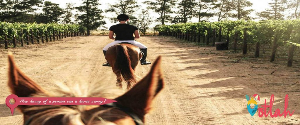 How heavy of a person can a horse carry?