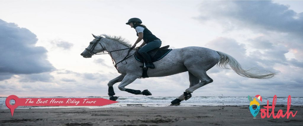 The Best Horse Riding Tours