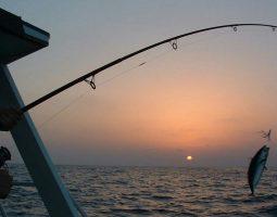 Fishing in Bahrain