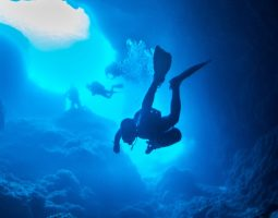 Discover Scuba Diving in Bahrain
