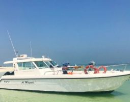 Boat tours in Bahrain