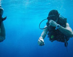 Introductory Sea Dive in Bahrain