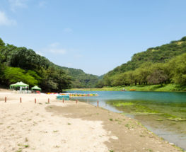 4 Days Tour in Salalah