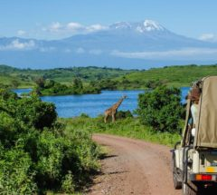 Enjoy a unique safari trip to Tanzania for 5 Days