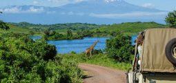 Enjoy a unique safari trip to Tanzania for 5 Days