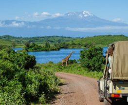 استمتع برحلة سفاري فريدة إلى تنزانيا لمدة 5 أيام