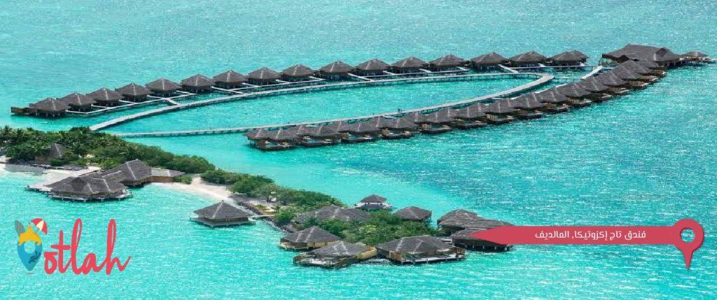 فنادق المالديف - تاج إكزوتيكا