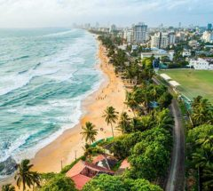 An amazing day tour in Colombo
