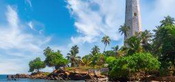 جولة فاخرة لمدة 6 أيام في سريلانكا