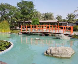 Wild life tour in Bahrain