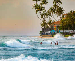 Amazing 13 days tour in Sri Lanka