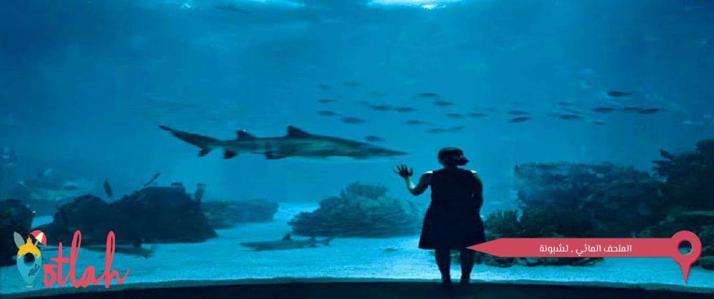 عاصمة البرتغال - المتحف المائي