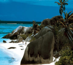 Enjoy unforgettable tour in Sri Lanka for 4 days