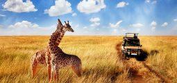 Majestic Tanzania 6 days/5 nights safari