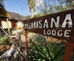 4 Day Safari Tremisana Lodge