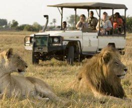 5 Days South Africa safari in Katekani Tented Lodge