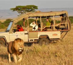 Enjoy the best of Kenya & Tanzania for 12 days