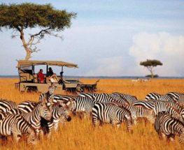 13 يوم / 12 ليلة من مغامرة عجائب العالم - كينيا وتنزانيا