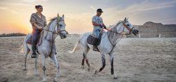 رحلة ركوب الخيل مع غروب الشمس في البحرين وجولة في الاسطبل