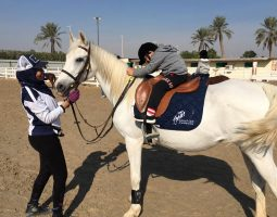 Experience an amazing Horse Riding tour in Khobar