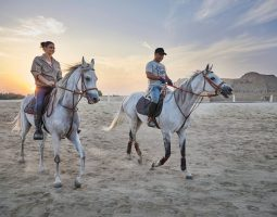Bahrain Sunset Horse Riding & Stable Tour