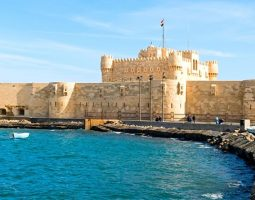 أفضل جولة يومية في الإسكندرية من القاهرة
