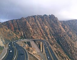 Exciting Taif City Tour