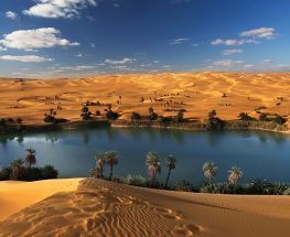 Enjoy a Day Tour to El Fayoum Oasis and Wadi al Rayan