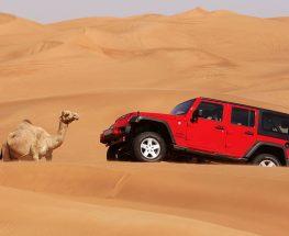 استمتع بتجربة السفاري الصحراوية في الرياض