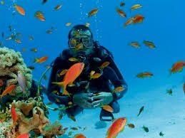Scuba Diving Excursion in EL Gouna