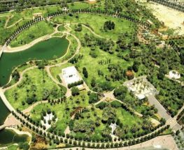 spend quality time with your family in Olaya Park