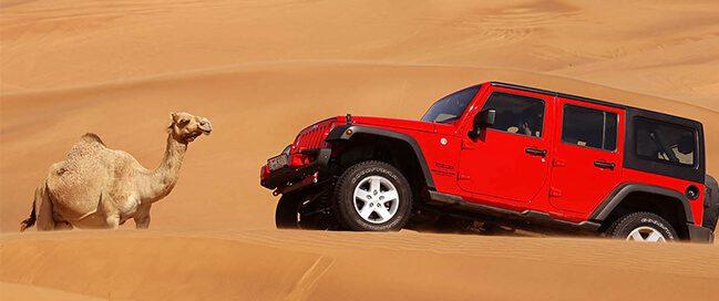 صحراء سفاري