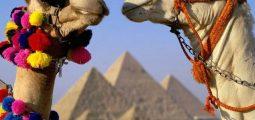 استمتع برحلة ممتنة في القاهرة والإسكندرية