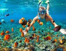 Enjoy the best snorkeling trip in Jarada Island