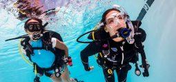 اكتشف الغوص تحت الماء مقدمة سريعة وسهلة لاستكشاف العالم تحت الماء.